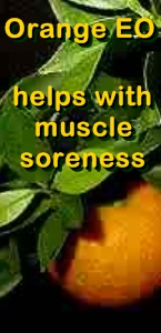 Ormus Minerals Orange Essential Oil Healing Ormus Oil -helps with muscle soreness
